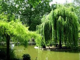 Les Buttes-Chaumont, la carrière devenue jardin